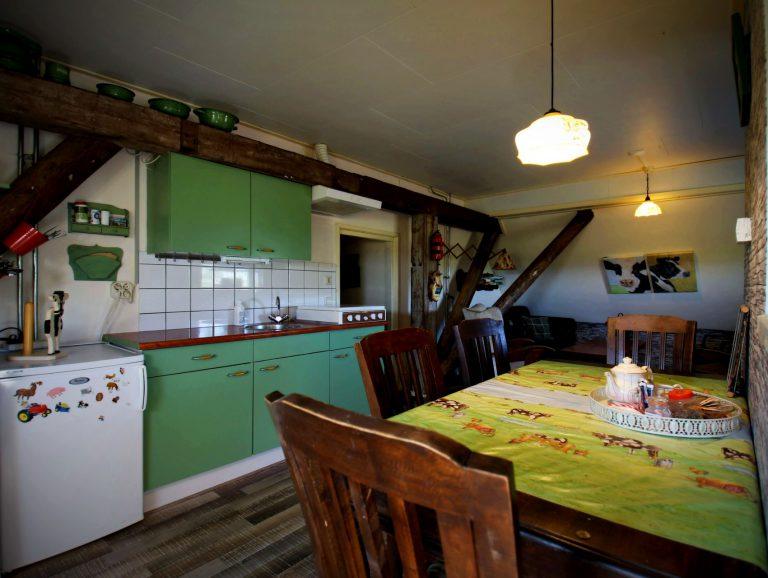 Keuken 2 tot max. 6-persoonsappartement Fan T Famke